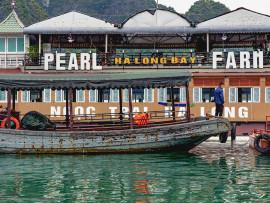 Hai Phong Halong bay 3 days 2 nights tour